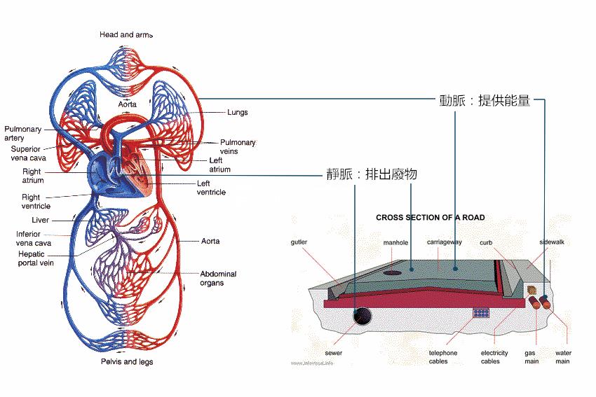 vessel-vs-road